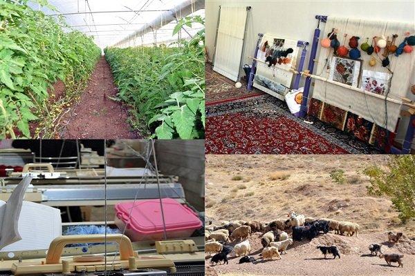 راه اندازی سامانه آنلاین فروش تولیدات روستایی در آینده نزدیک
