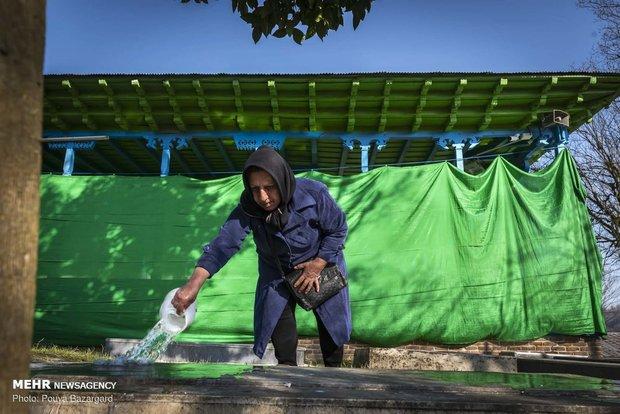 İran'ın kuzeyinde yemyeşil türbe