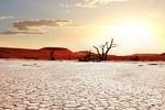 کاهش ۱۷ درصدی بارندگی در بام ایران/ خطر جدی کم آبی در کمین بخش کشاورزی