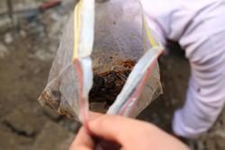 کشف بیش از ۱۲ تن انواع مواد مخدر و روانگردان در کشور
