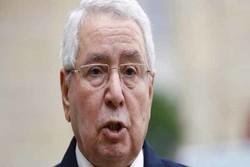 أول تصريح لرئيس الجزائر المؤقت