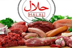 صادرات مواد غذایی حلال جایگزینی برای نفت