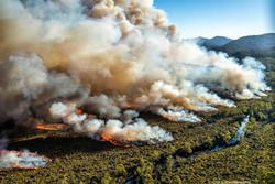 هشدار نسبت به وقوع آتشسوزی در مراتع و جنگلها/ اردبیل در مرز تب