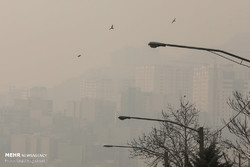 Tehran air pollution incurs annual loss of $2.8b