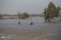 Flash flood hits southwestern Iran, villages evacuated