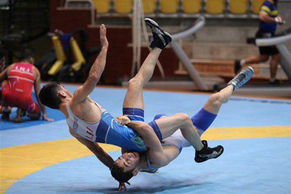 Iranian GR wrestlers gain 2 medals at Hungarian Grand Prix 2019