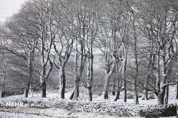 بارش سنگین برف در انگلیس