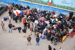 ۳۸۰ معتاد متجاهر در زنجان جمع آوری شد