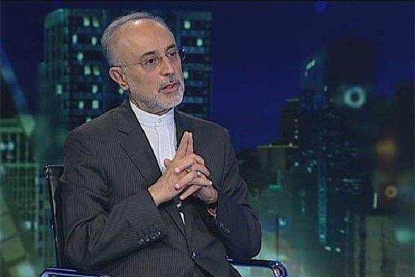 Salehi says Iran to build several yellowcake factories in Yazd