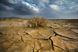 97% of Iran affected by long-term drought: expert