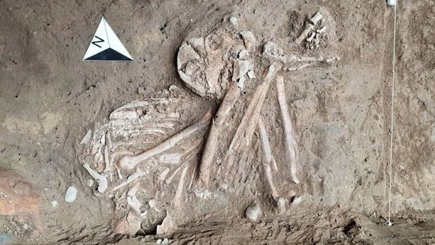 Bronze-Age skeleton, objects unearthed - Tehran Times