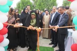 نمایشگاه صنایع دستی و هنرهای تجسمی در کنار خلیج فارس گشایش یافت