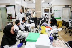 Iranian researchers planning to grow human pancreas