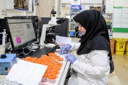 شرایط اعطای «گرنت» به محققان جوان و پژوهشگران اعلام شد