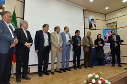 چهار کارفرمای نمونه تامین اجتماعی خراسان جنوبی تجلیل شدند