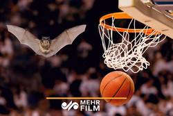 ورود ناگهانی خفاش به یک مسابقه بسکتبال!
