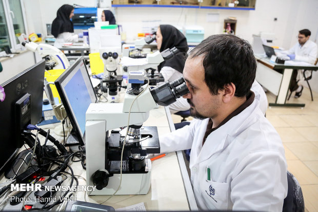 Royan Institute; a hub for infertility treatment in West Asia