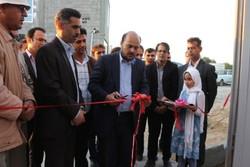 زیرساختهای کشت گلخانهای در استان بوشهر گسترش مییابد