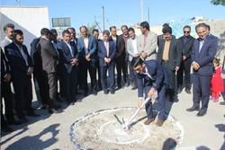 دریا مهمترین ظرفیت استان بوشهر برای سرمایهگذاری است