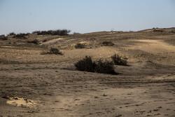 عراق مانع از مرطوب سازی بخشی از هورالعظیم شد