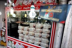 روزانه ۵۰ تن گوشت مرغ در استان قزوین توزیع می شود