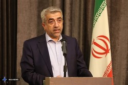 Iran's membership in EEU to increase its resistance against sanctions: Energy min.