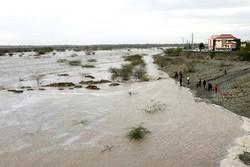 بارندگی گسترده در کرمان موجب سیلابی شدن رودخانه ها شد