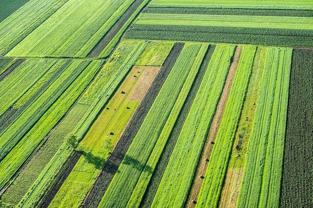Iran promotes using remote sensing satellites in agriculture