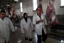 نظارت بر توزیعگوشت گرم در کشتارگاههای استانقزوین