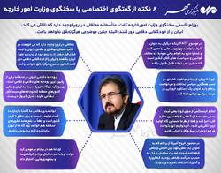 ۸ نکته از گفتگوی تفصیلی مهر با سخنگوی وزارت امور خارجه