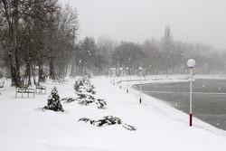 بارش ۶۰ سانتیمتری برف در سرعین/سامانه ناپایدار دیگری در راه است