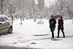 تساقط الثلوج في مدينة أردبيل الايرانية / صور