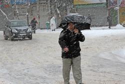 آغاز بارش برف در شهرکرد/ آماده باش اکیپ های برف روبی