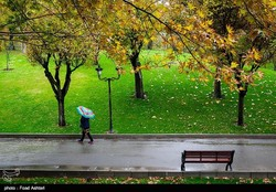 Precipitation triples last year's mean in Iran