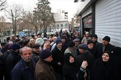 روزانه ۱۲۶ تن گوشت دولتی در استان تهران توزیع می شود
