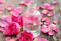 سنوياً أكثر من مليون دولار صاردات ماء الورد في كاشان