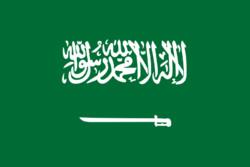 السلطات السعودية تعتقل 8 نشطاء حقوقيين