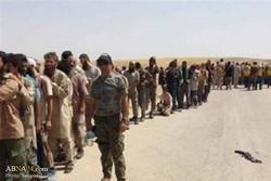 ڕەنگە ۵۰۰۰ کەس لە ناو باغۆزدا بێت/ ۳۰ هەزار داعشی خۆیان بەدەستەوە داوە