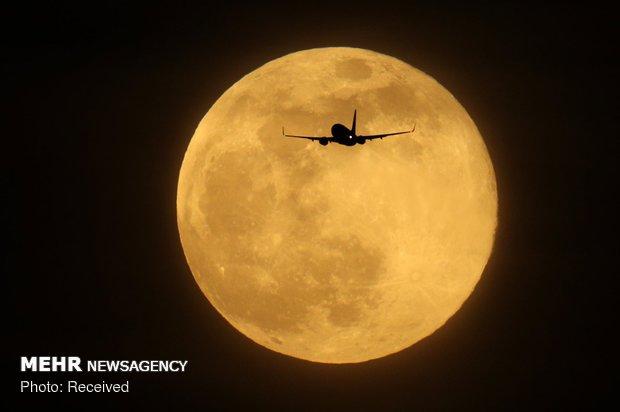 قرص ماه در نقاط مختلف جهان