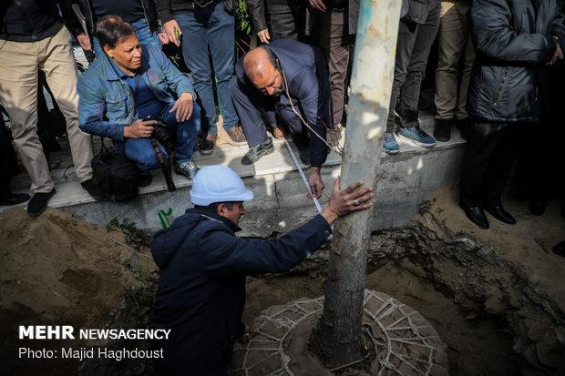 آیین کاشت 40 اصله درخت به مناسبت چهلمین سالگرد انقلاب اسلامی در حاشیه خیابان ولی عصر (عج)
