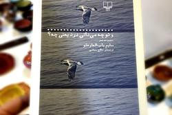 مجموعه شعر شاعر آذربایجانی نقد و بررسی میشود
