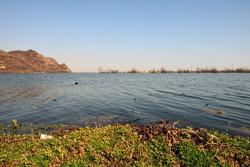 افزایش آب  تالاب استیل شهرستان مرزی آستارا