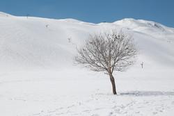 İran'ın en güzel kış manzaraları