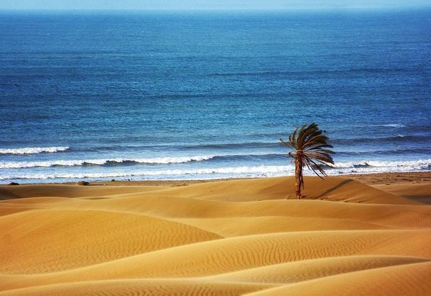 Darak, where the desert meets the sea