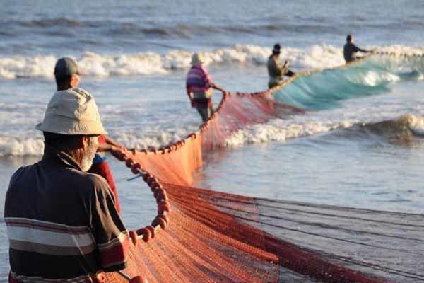 Iran's fish production at 1.2 million tons per annum