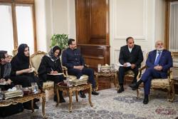 لقاء ظريف مع مساعد وزير خارجية فنزويلا/صور