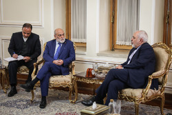 Zarif receives deputy foreign minister of Venezuela