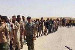 کردهای سوریه ۱۵۰ داعشی دیگر را به ارتش عراق تحویل دادند
