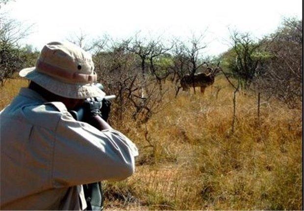 دو شکارچی نادم سقزی، همیار محیط زیست شدند