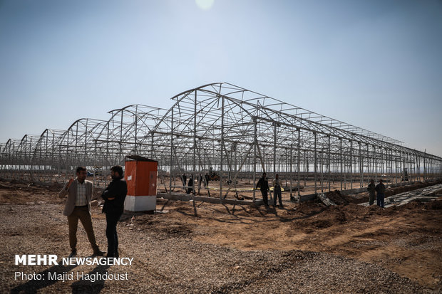 Operation of 2nd phase of largest hydroponic greenhouse in Zarandieh